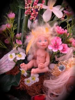 baby fairy deluxe kit