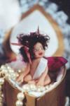 Baby Fairy in a fancy box